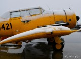 CAF, Carol Hunt, Warbird, Anchorage, AK