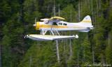 N88G, DHC-2 Beaver, Eaglenook Resort, Vancouver Island, Canada