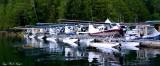 Beaver Owners  Pilot Association, Eaglenook Resort, Vancouver Island, BC, Canada