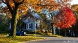 autumn on Church street, Iowa City, Iowa
