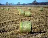 hay rolls Iowa