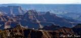 Grand Canyon National Park, North Rim, Colorado River, Arizona