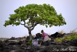 Local artist, Kekaha Kai State Park, Big Island, Hawaii