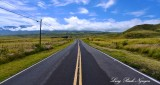 Saddle Road, Big Island, Hawaii 2014