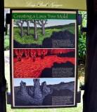 Lava Tree Mold, Lava Tree Monument, Pahoa, Hawaii