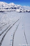 Moraine, Malaspina Glacier, Samovar Hills, Seward Glacier, Wrangell-Saint Elias Park, Alaska