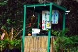 Hi Tech Fruit Stand, Kaloko Drive, Kaloko, Big Island, Hawaii