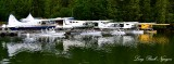 DHC-2 Beaver Floatplanes at Eagle Nook Resort Vancouver Island Canada