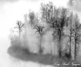 Fog over Snoqualmie River Valley Washington