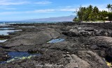 Lava Field and Beach at Puako Hawaii
