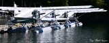 DHC-2 Beaver Floatplanes, Eaglenook Resort, Jane Bay, Vancouver Island, BC, Canada