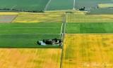 Farm in Primary Colors, Fir Island, Washington