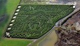 Bob's Corn Maze, Snohomish, Washington
