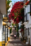 Riding in Marbelle Narrow Street,  Spain