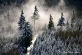 First Snow of Season, November 15 2015