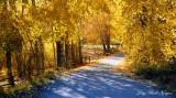 Just around the bend Hailey Idaho 2013