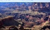 Grand Canyon National Park Colorado River from Moran Point Arizona 458