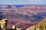 Grand Canyon National Park Colorado River from Moran Point, Arizona 459