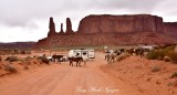 Horses at Three Sisters Monument Valley Navajo Tribal Park Arizona 920