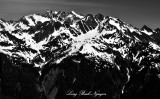 Mount Olympus, Jeffers Glacier, West  Peak, East Peak,  Olympic National Park, Washington 114