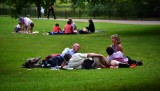 Picnic in St James Park London England 230