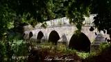 West Street Bridge across River Stour Blandford Forum England 053
