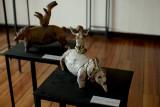 Exposición De Fuego y Humo - Castillo Wolf, 2015