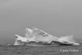 iceberg-2950.jpg