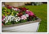 A Boatful of Flowers