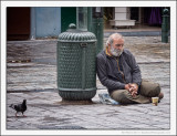 Man and Pigeon
