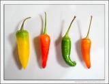 Rainbow Chilis
