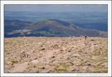 Cairngorm Summit