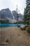 Moraine Lake