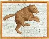 Astrohistorica