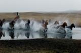 內蒙壩上 Bashang (Inner Mongolia)