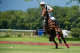 Swiss Medium Goal Polo Championship 2013