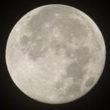 Super Moon P1030798.JPG