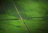 La croix verte - Lot - Sud de la France