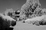 054 - Tiantan Park, Beijing