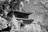 063 - Tiantan Park, Beijing
