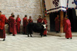 193 - Monks, Ganden Monastery