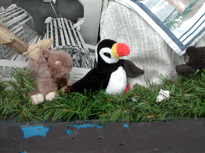 Puffin in Goodwill window in case I couldnt get this....