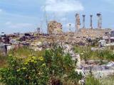Ancient Roman Ruins
