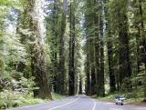 Humboldt State Park