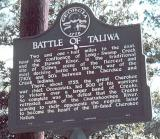 Taliwa - The Tale Of Indian Troubles