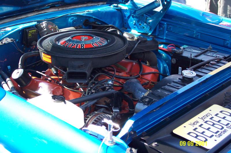 Roadrunner Superbird Blue 1.JPG