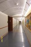 CLAS Hallway.JPG