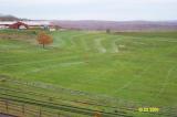 Cow Field Lines 102301 2.JPG