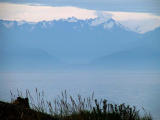 Olympic Mts.from Victoria.jpg