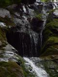Top of falls.jpg